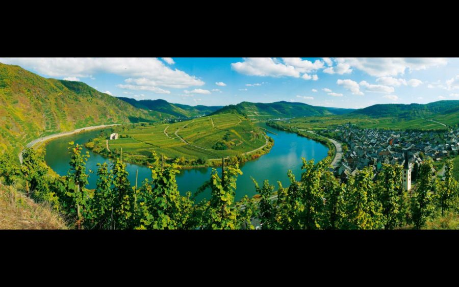 Al Castello di Grinzane omaggio alla bellezza del paesaggio vitato non solo piemontese