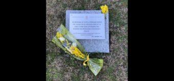 Asti, mimose sulla targa per le donne vittime di violenza per l'8 marzo