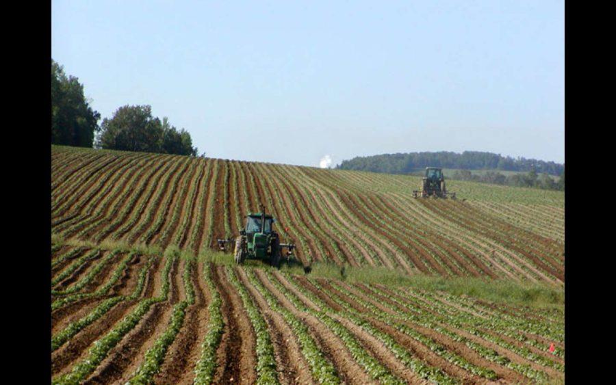 Confagricoltura Asti, la piattaforma Agrijob per trovare lavoro in questo periodo difficile