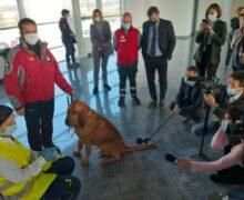 All'aeroporto di Cuneo progetto pilota per l'utilizzo dei cani anticovid