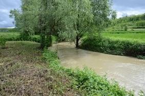 La Provincia di Asti avvia la riqualificazione fluviale dei torrenti Tiglione e Triversa