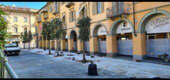 Alba, partiti i lavori per piazza Michele Ferrero