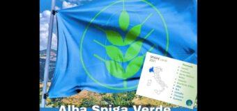 Alba è Comune Spiga verde 2021