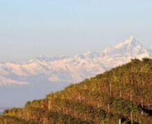 Alba, serata dedicata al paesaggio autunnale delle nostre colline, con il libro di Beppe Malò