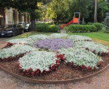 Alba vince un nuovo premio per gli allestimenti floreali e la cura del verde pubblico